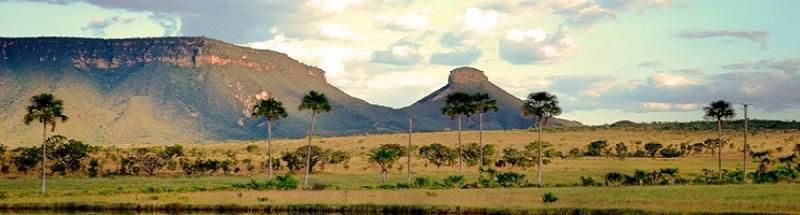 Brasil Norte