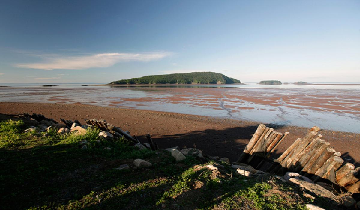 Acampamento, Five Islands Provincial Park
